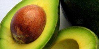 Caroço do abacate