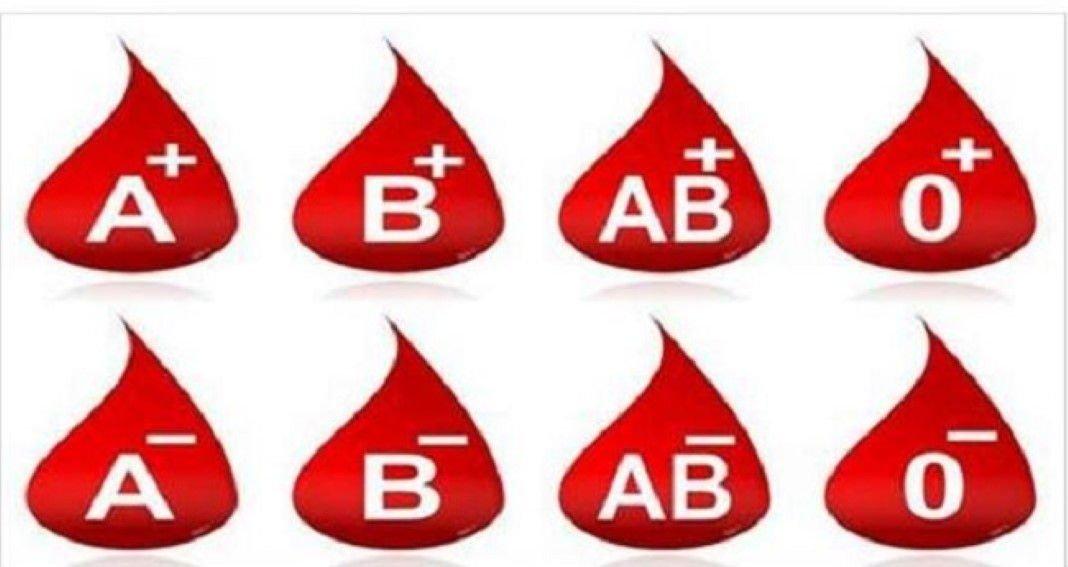 Dieta tipos de sangue