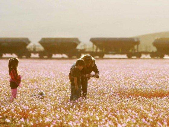Deserto no Chile