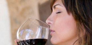 Cheirar vinho