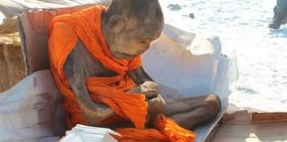Cientistas mongois