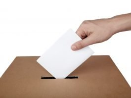 Eleitores suecos
