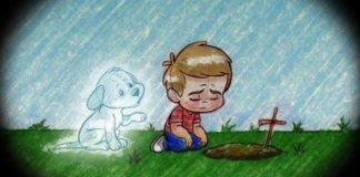 Perder um animal de estimação