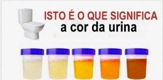 cor da tua urina