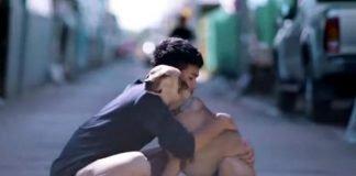 Reação dos cães de rua