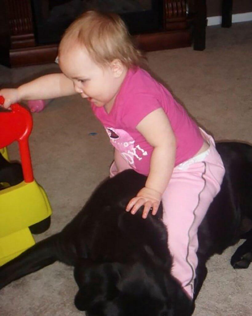 Estar grávida e ter um animal de estimação