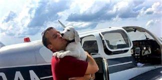 Homem resgata animais feridos