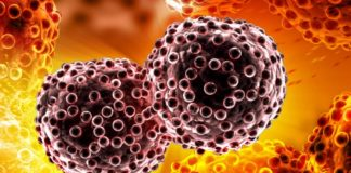 proteína que espalha cancro