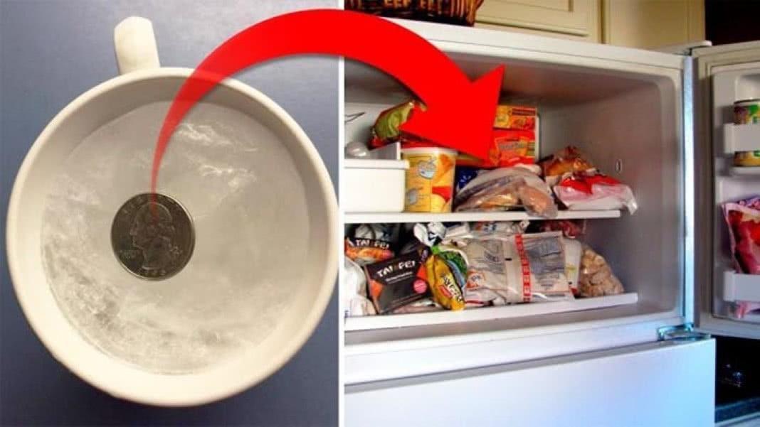 moeda no congelador