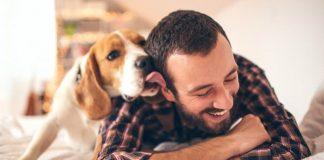O teu cão vê-te como pai dele