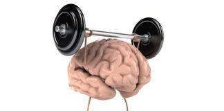 A base de um cérebro saudável