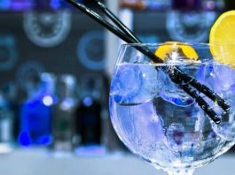 Gin Tónico ajuda no desaparecimento da febre