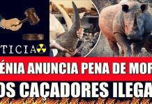 caçadores de animais em extinção