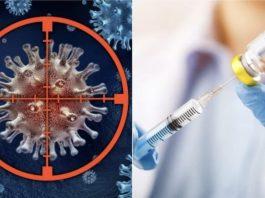 Vacina Harvard contra cancro